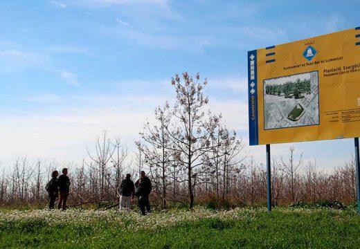 El Clúster Salut Mental Catalunya participa en un projecte interclúster per a la inserció laboral en el sector de la biomassa